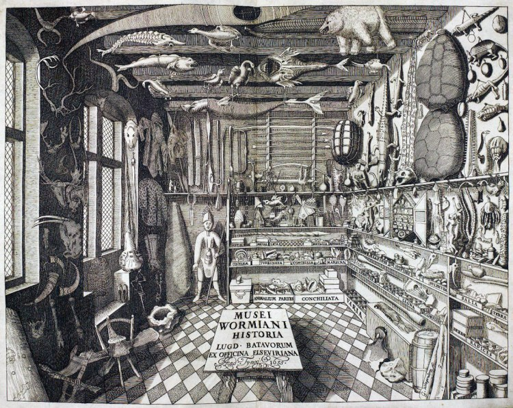 a black and white etching of Worm's museum