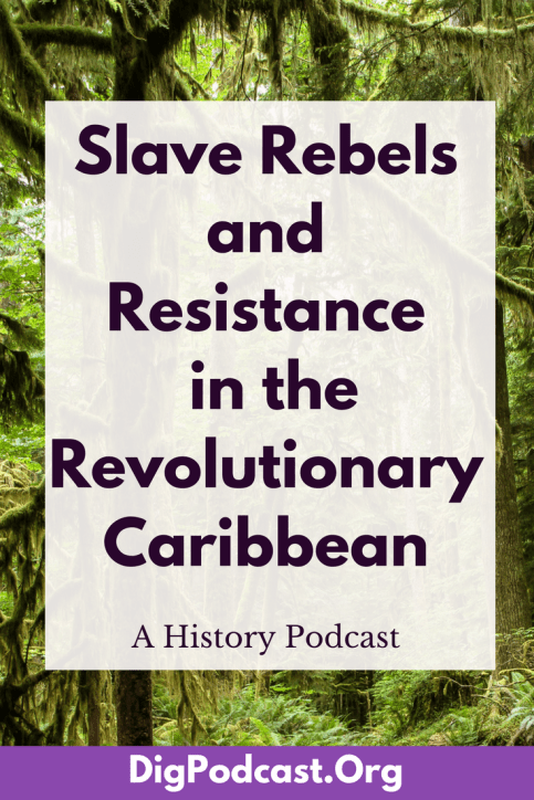 The history of slave rebels and resistance in the Caribbean is a rich and complicated story. Enslaved people in the Caribbean resorted to active resistance much more often than their North American and South American counterparts.