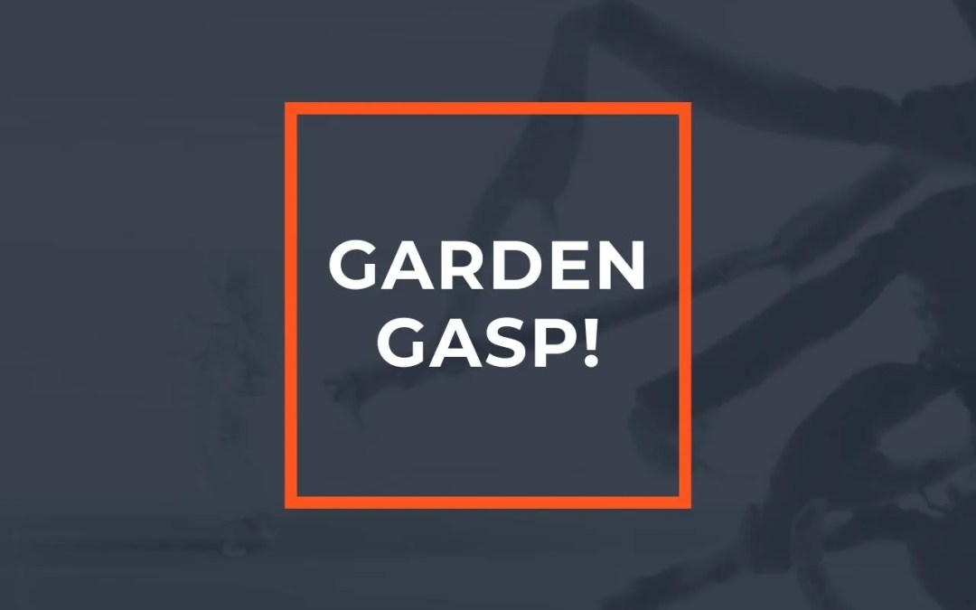 Garden Gasp! Eastcheap Space @ ASC Gallery