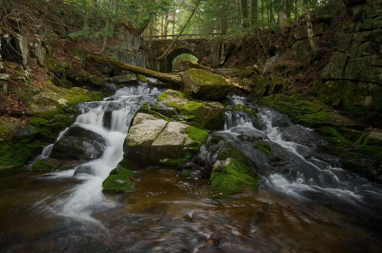 Falls Brook First Waterfall