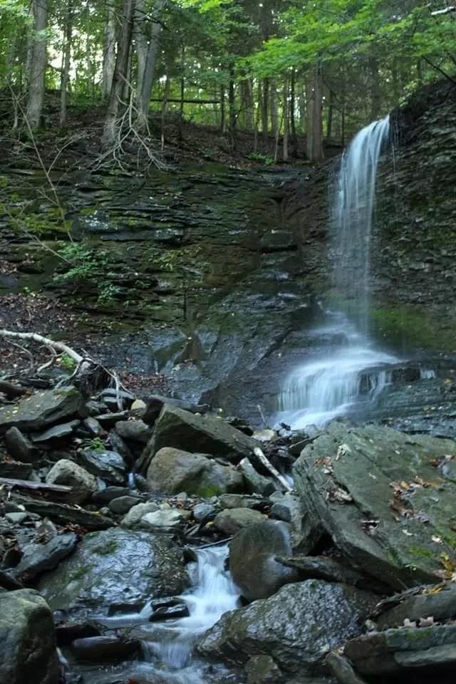 Bucktail Falls