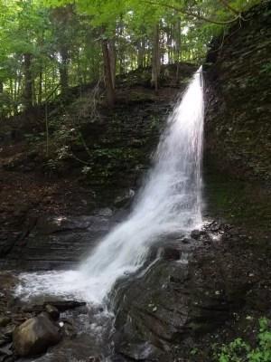 Bucktail Falls, Onondaga County, New York