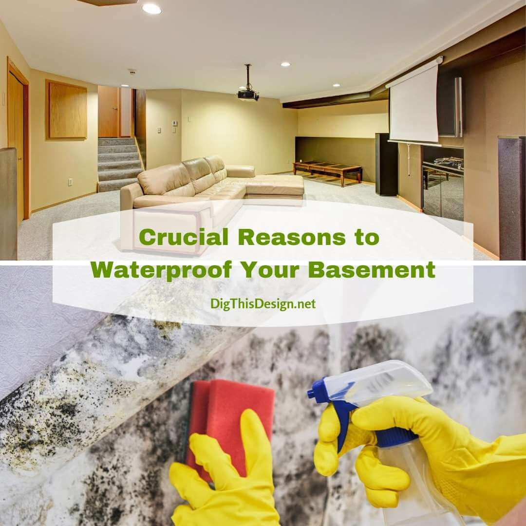 Crucial Reasons to Waterproof Your Basement