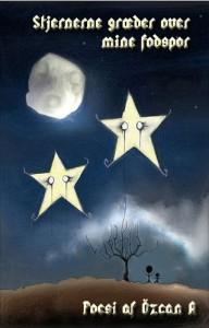 Stjernerne gærder