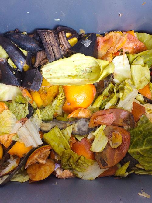 bokashi_composting_without_bran_1