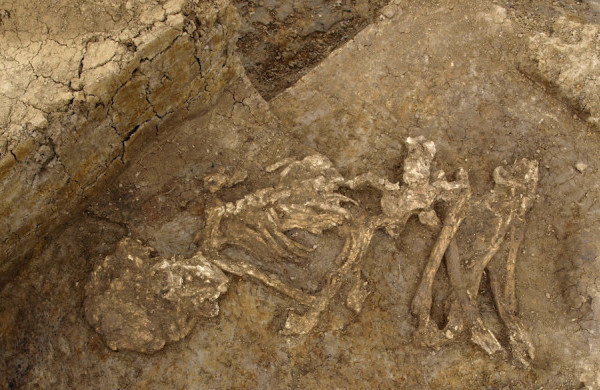 Skeletal remains from Neat's Court in Kent, England. These bones show signs of low-level heat treatment, indicating that the body might have been mummified in an extremely dry environment or through smoking. Credit: Geoff Morley
