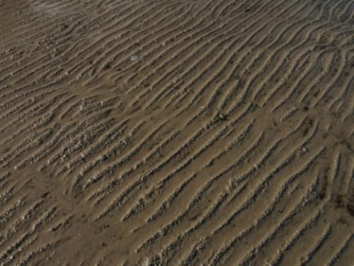 Beautiful sand patterns