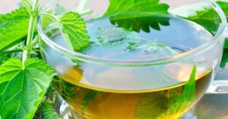Rezultat slika za žara čaj