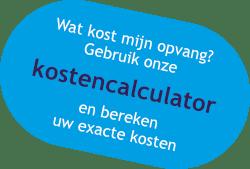 button-kostencalculator