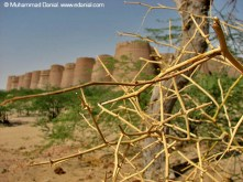 The best-preserved and most accessible of Cholistan's historic remains is the dramatic fort at Derawar, 45 km south of Dera Nawab. The vast square structure built in 1733 as the headquarters of Sadiq Muhammad Khan I, the first nawab of Bahawalpur. Visible for many kilometres, the fort has 40 enormous bastions, most of them intact, and it stands more than 30m high. Most of the interior is in need of renovation and there isn't actually that much to see.