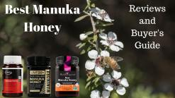 Top 15 Best Manuka Honey Brands 2019