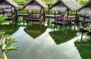 Danau Tengah Sawah Boyolali