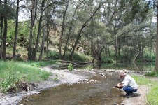 Sofala - Panning for Gold