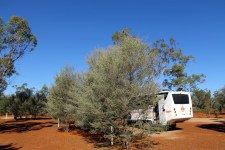 Charleville - The Red Lizard Campground (Qld)