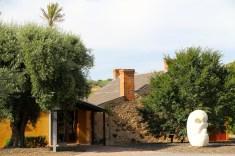 Fleurieu Peninsula - Shingleback Winery (SA)