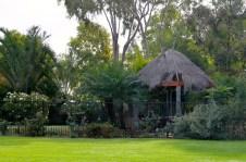 Bourke - Kidmans Camp - A Green Oasis (NSW)