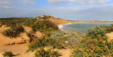 Beachport Conservation Park (SA)