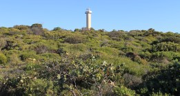 Lincoln National Park - Lighthouse (SA)