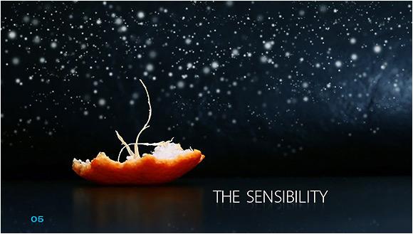 The Sensibility