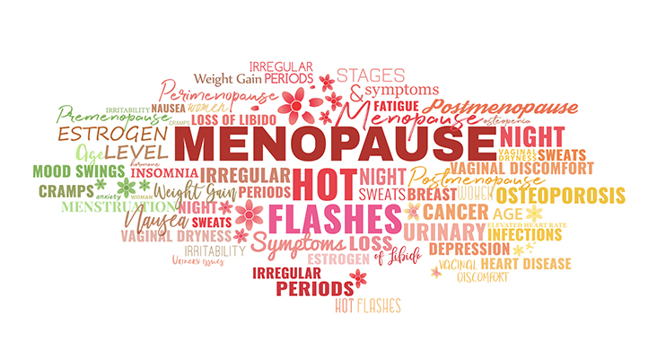 nopause symptoms tags cloud. Estrogen level, hot flashes, loss of libido, night sweats. Beautiful vector illustration.