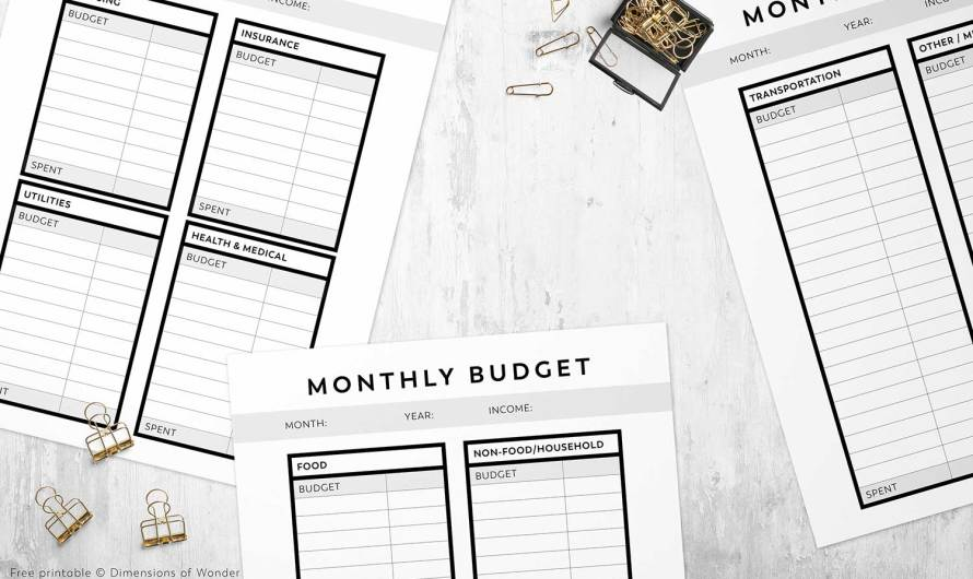 Printable Monthly Budget Planner with a Minimalist 'No-Frills' Layout