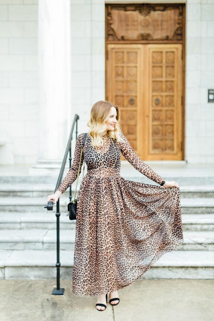 Megan - pipmegan.com | Leopard Print Dress | Sheer Dress
