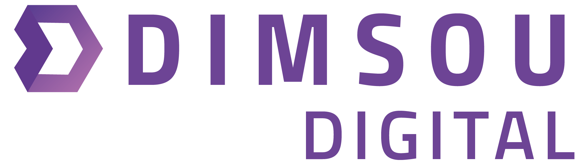 Web Design, Development + Marketing – Dimsou Digital