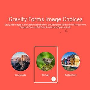 JUAL Gravity Forms Image Choices Add-On
