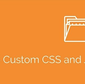 JUAL Simple Custom CSS and JS PRO