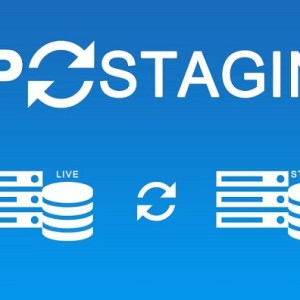 JUAL WP Staging Pro - One-Click Solution for Creating Staging Sites
