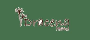 Dracema - Dinâmica Inventários
