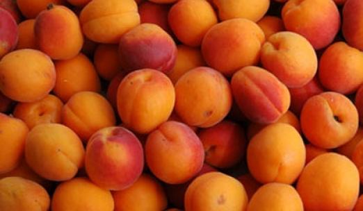 Με τα φρούτα του Ιουνίου