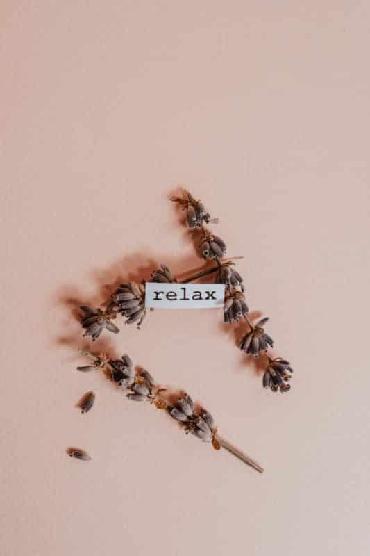 foto keren untuk profil whatsapp instagram telegram tiktok facebook line aestetik estetik tulisan relax dengan daun panjang kering background/latar belakang coklat polos