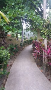 Maya Key garden path