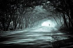 winter2012-4971