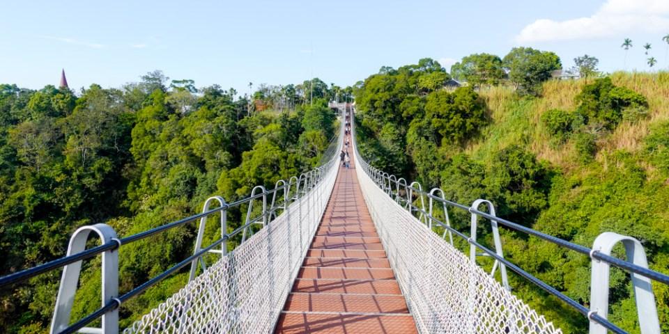 南投旅遊景點  漫步雲端「猴探井天空之橋(微笑天梯)」,景色優美,適合親子、家庭出遊,來享受愜意的時光吧~