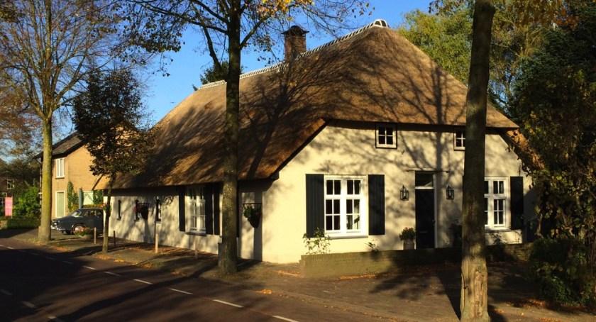 rieten dak renovatie
