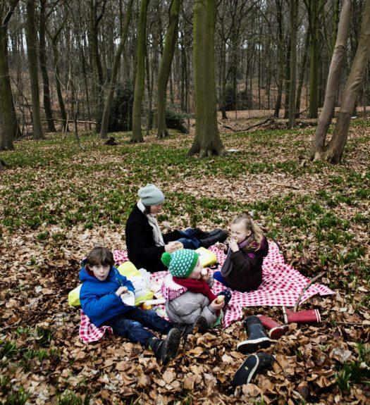 Ronse Muziekbos Picknick