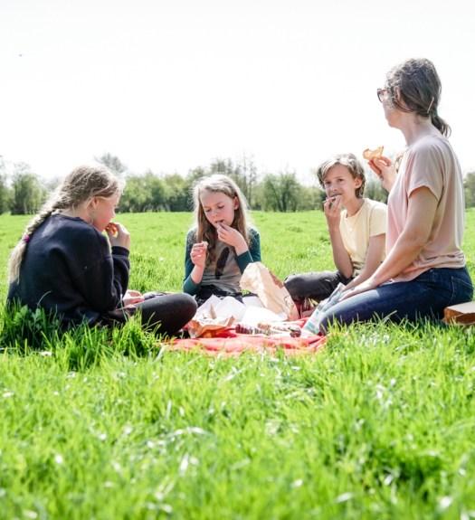 Picknick Ardennen