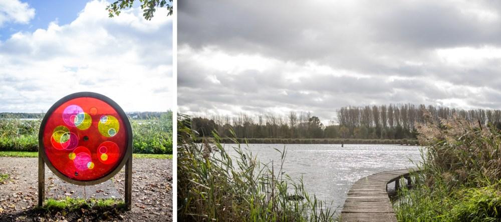Natuur in België: Het vinne