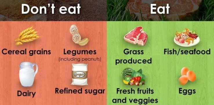 What to Eat on a Paleo Diet