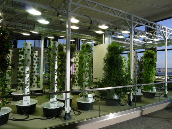 chicago ohare airport indoor vertical garden