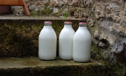 Pros and Cons of Pasteurization