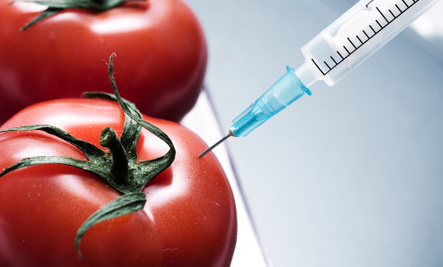Senate Votes: Keep Consumers in the Dark About GMO Food