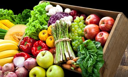 Big Organic Garden Delivers Georgia's Best Fruits & Veggies