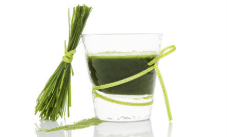Spirulina: The Incredible Superfood You've Never Heard Of