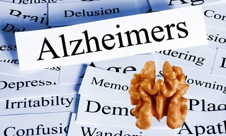 A Handful of Walnuts May Keep Alzheimer's Away