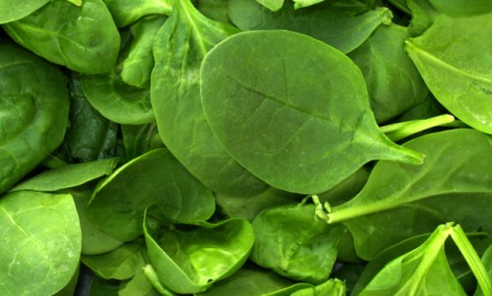 Foods for Immune Health: Spinach