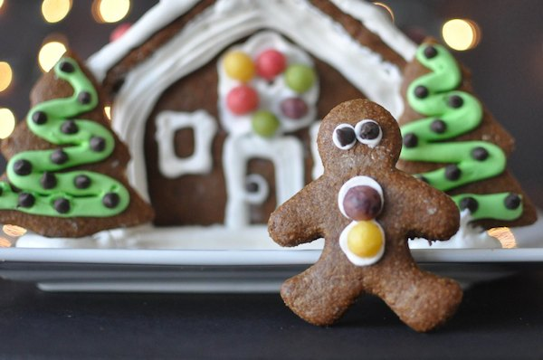 paleo-gingerbread-house-fedfit-97