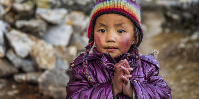 tibetans' lives and religion are being ripped from them. tell the…